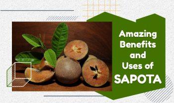 Amazing Benefits and Uses Of Sapota